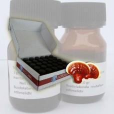 Reishi %30 Ekstrakt 300 ml